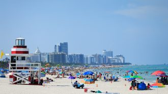 image of people on a beach in Florida in spring 2020
