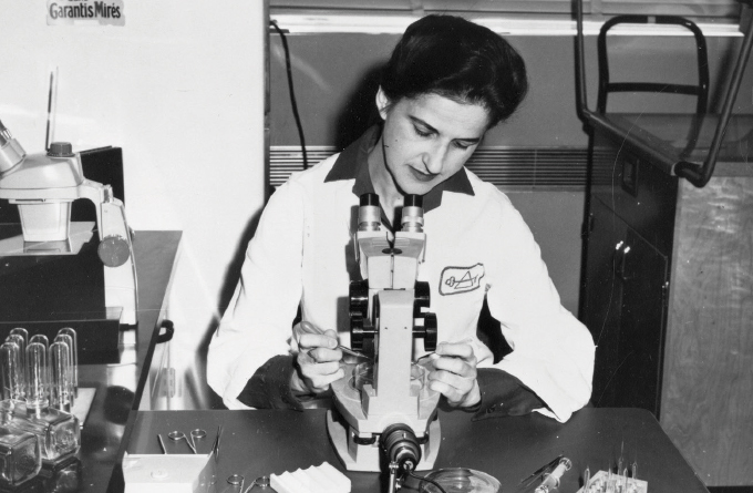 black and white image of Beatrice Mintz looking under the microscope