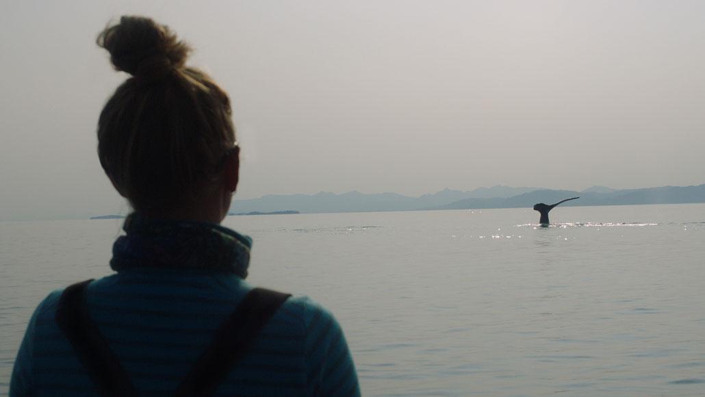 una donna vede una coda di balena megattera