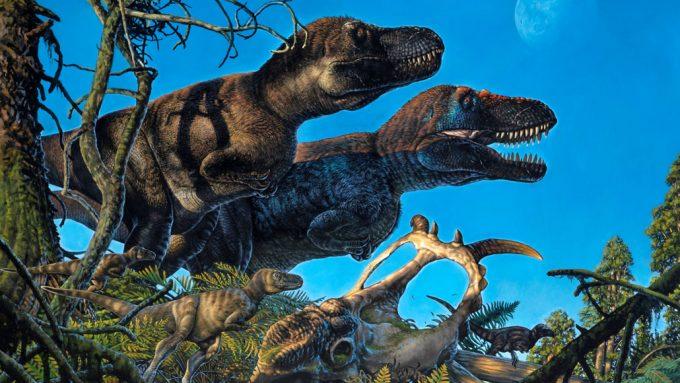 family of tyrannosaurs