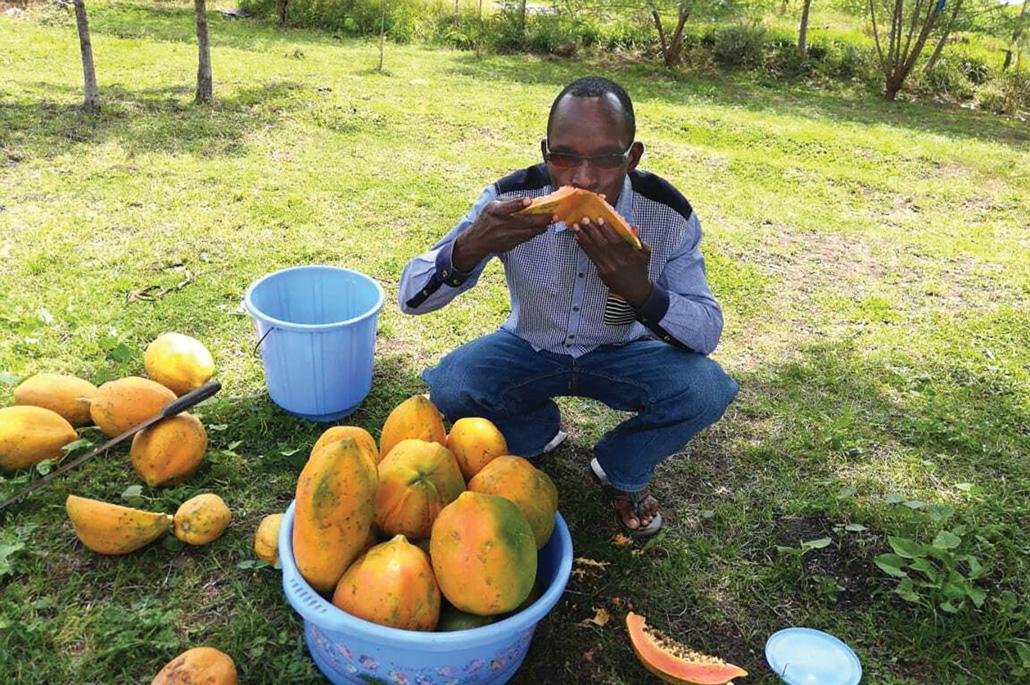 a Kenran farmer squats and snacks on papaya