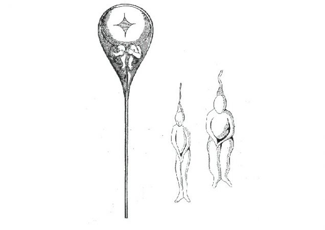 illustration of tiny figures inside an illustration of sperm