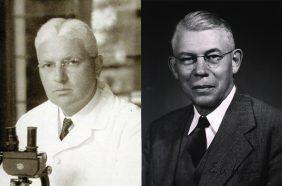 professional photos of Edgar Allen and Edward A. Doisy
