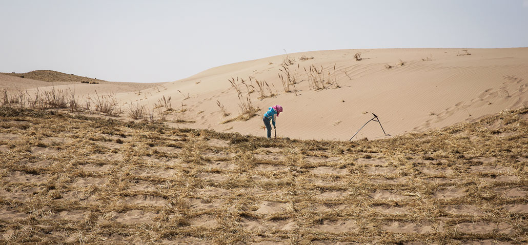 a wide photograph of a desert, with a woman in the center dropping straw
