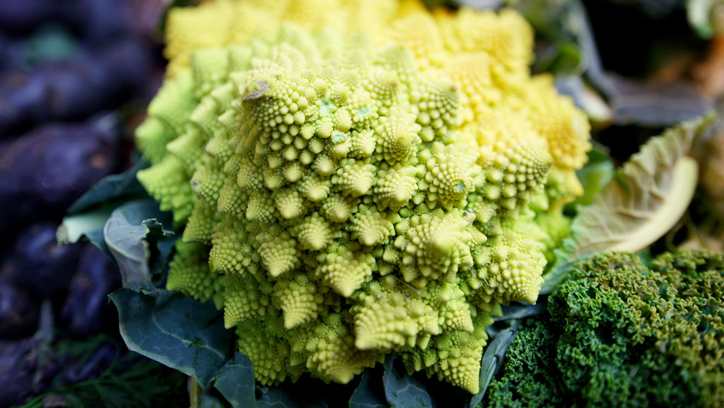Romanesco cauliflower