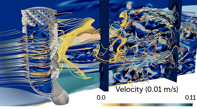 simulation of water flow through a Venus's-flower-basket sea sponge