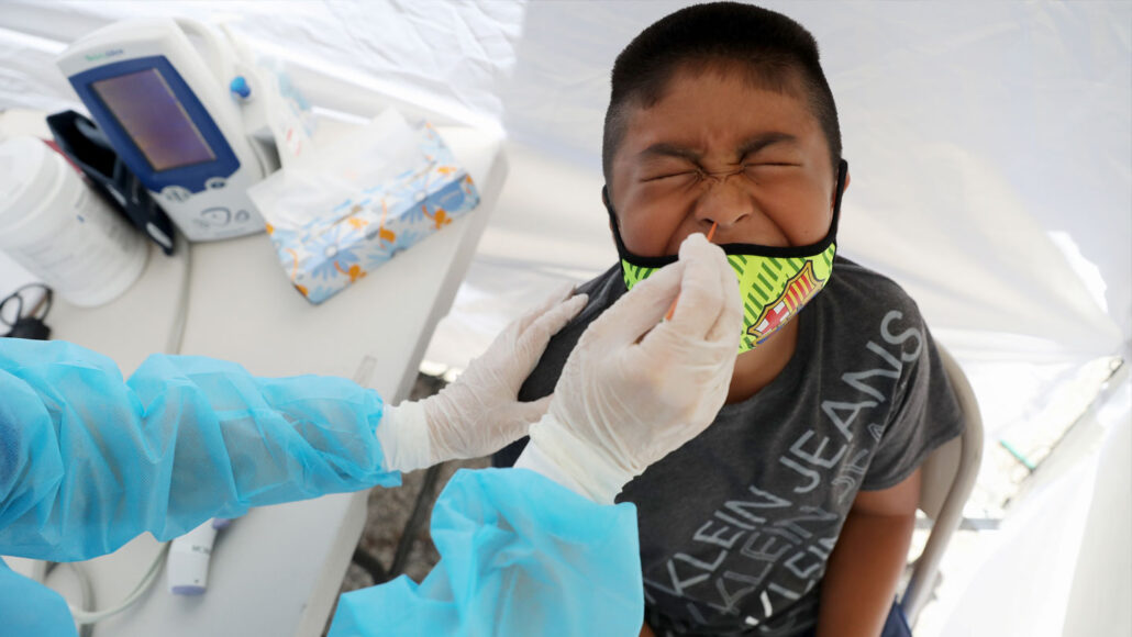 a child grimaces while his nose is swabbed