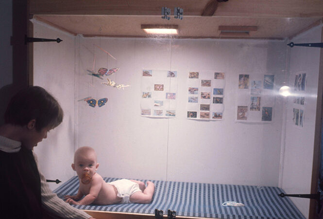 an infant in a climate controlled crib