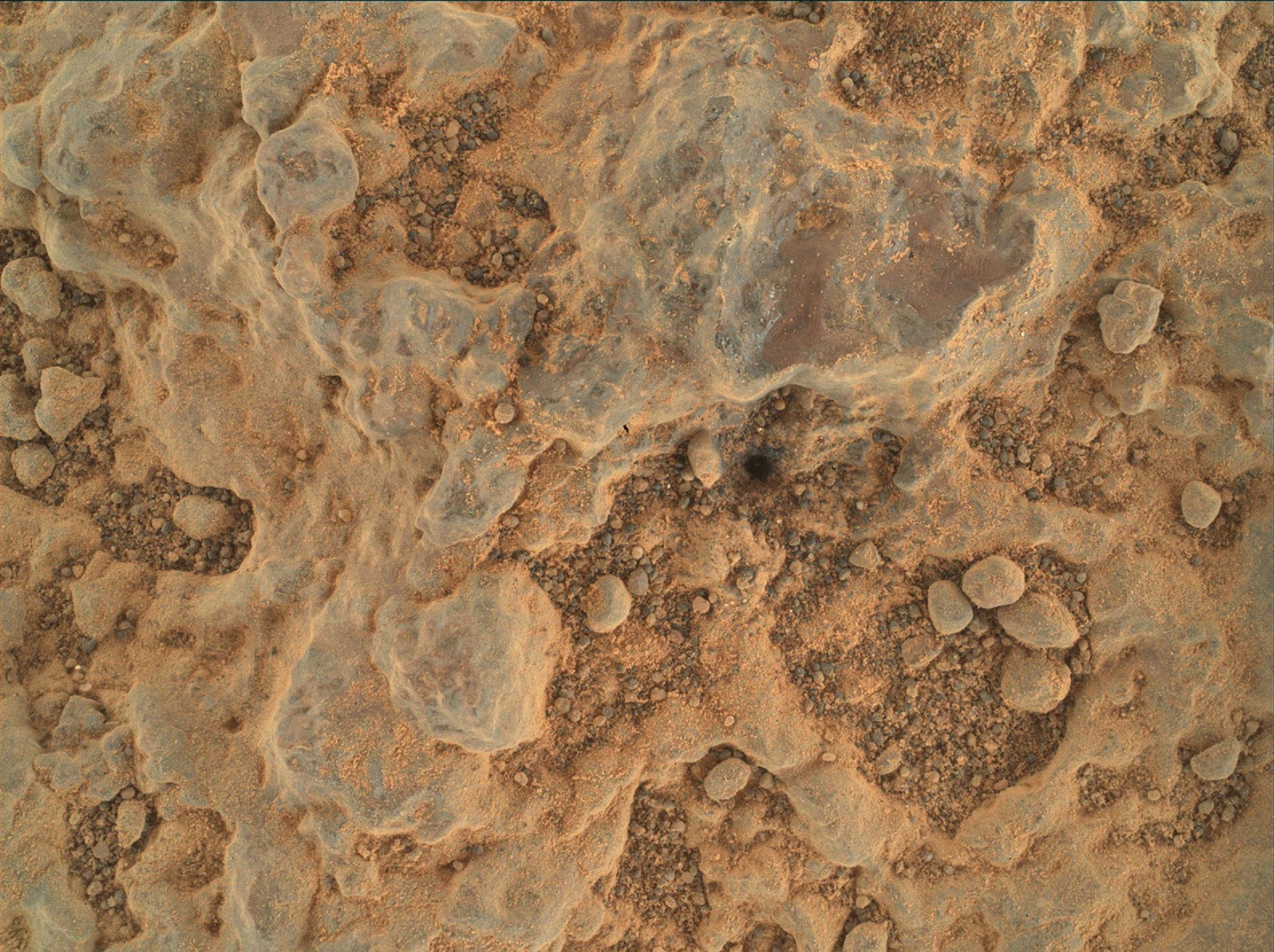 Close-up dari batuan Mars bertekstur