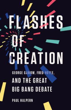Copertina del libro Flash of Creation