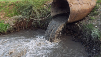 sewage runoff pours out of a drainpipe