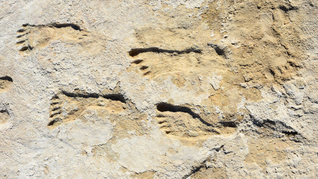 rock with fossilized human footprints