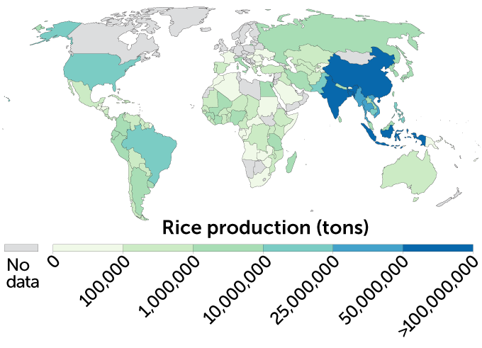 a map showing where rice is grrown around the world