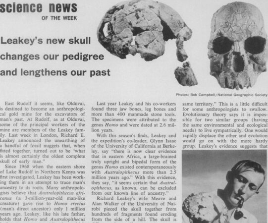 SN coverage of Leakey find