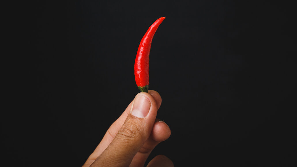 a person holding a small red chili pepper with their fingertips