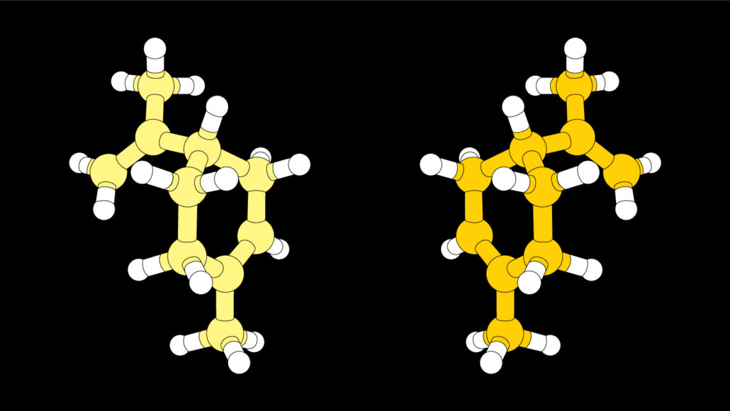 illustration of the molecular structures of two mirror versions of limonene
