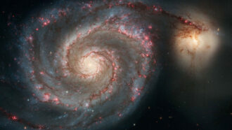 image of the Whirlpool galaxy