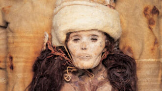 The head and neck of a naturally mummified woman with long dark hair, wearing a white hat